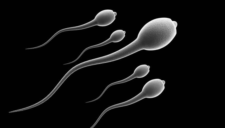 انجاز تاريخي..علماء يكتشفون سر تحديد جنس الجنين