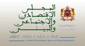 المجلس الاقتصادي والاجتماعي والبيئي