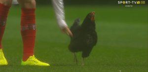 """مقاضاة لاعب كرة قدم بسبب """"دجاجة"""""""