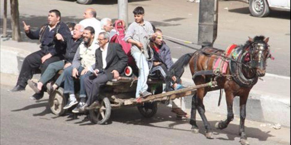 عربة دواب