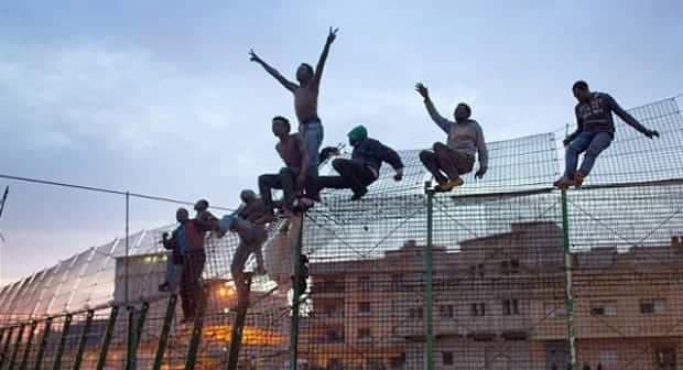 مهاجرين مليلية سياج