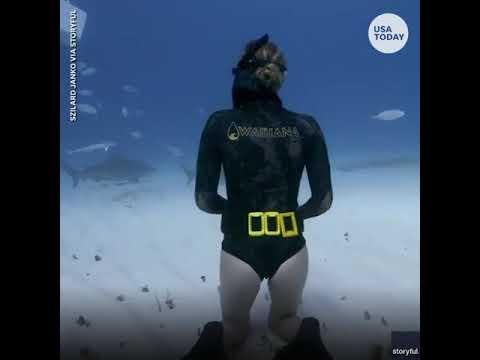 فيديو يحبس الأنفاس.. فتاة تداعب سمكة قرش قاتلة تحت الماء