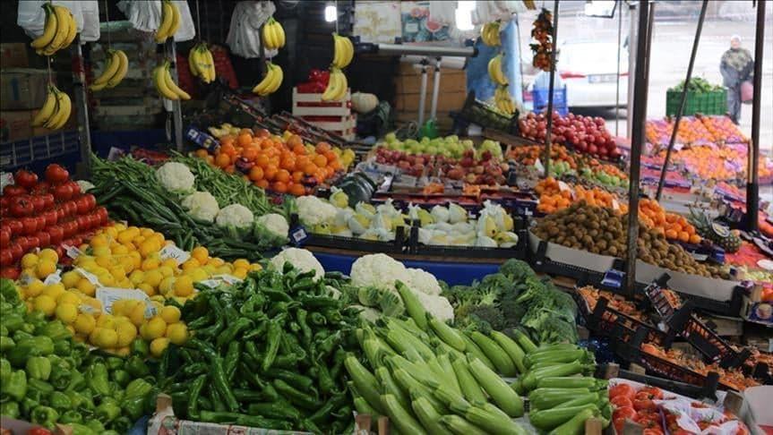 نهم المغاربة - الخضر