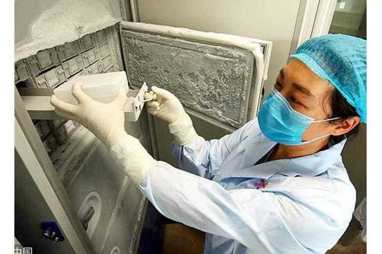 تسريب صورة خطيرة من داخل المختبر المتهم بنشر كورونا بعد اعتراف باحثة داخله بالكارثة
