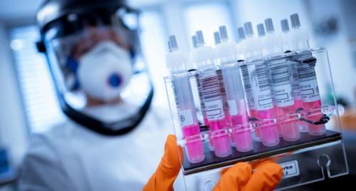 باحثون مغاربة يحللون أزيد من 3000 جينوم لكورونا