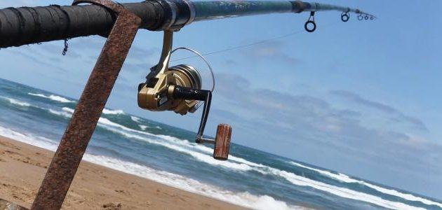 الصيد