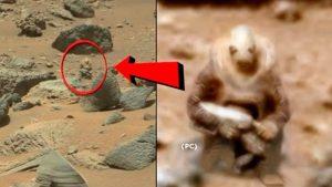 كائنات فضائية تستعد للهبوط على كوكب الأرض للتعايش مع البشر!!