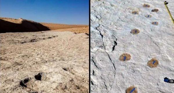 السعودية.. فريق بحث يعثر على آثار بشرية حول بحيرة تعود لـ 120 ألف عام