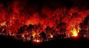 حريق 1