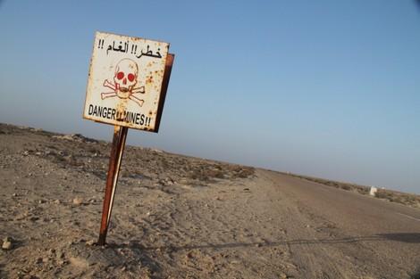 المغرب يجدد التأكيد على تشبثه بالمبادئ الإنسانية الأساسية لاتفاقية حظر الألغام المضادة للأفراد