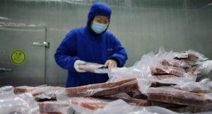 الصين.. رصد فيروس كورونا على عبوات لحم خنزير مجمد مستورد من الأرجنتين