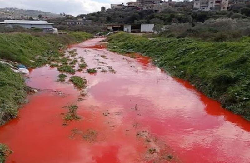 نبع مياه قرية قراوة بني زيد في محافظة رام الله يتحول الى اللون الاحمر