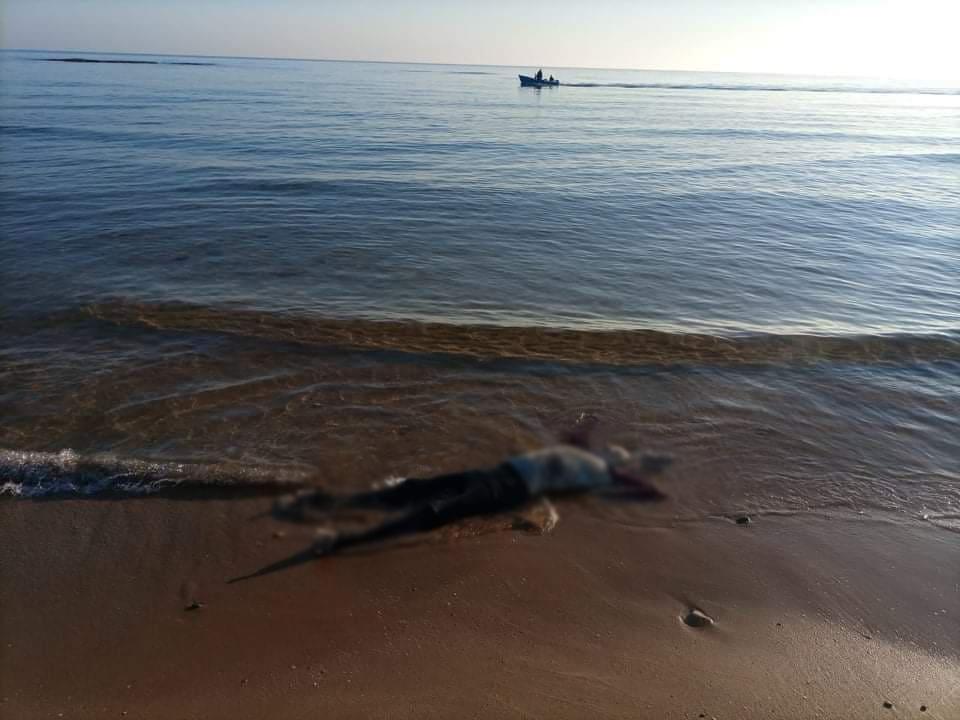 البحر يلفظ جثة مقطوعة الأطراف بأركمان ـ الناظور
