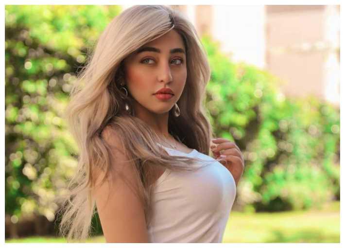 اعترافات فتاة مصرية مشهورة ومتابعة في قضية المقاطع الإباحية تثير رواد الواصل الاجتماعي
