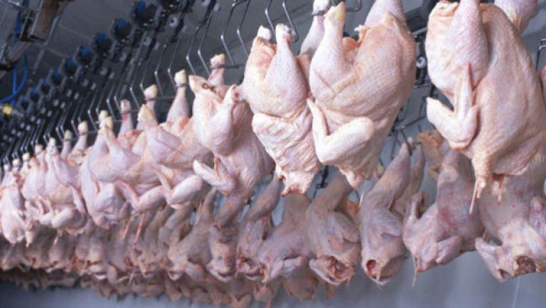 الفاعلون في سوق اللحوم البيضاء