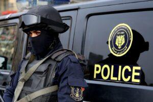 الشرطة الدولية